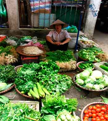 vendedor callejero en Doi Can Hanoi